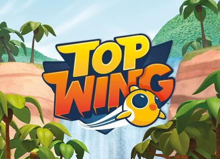 TopWings